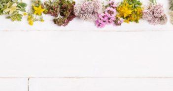 bloemen-bovenaan