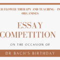 Essay Competition On The Occasion Of Dr Bach's Birthday